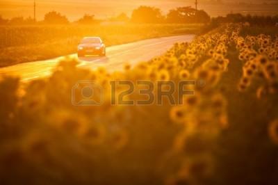 21309969-bukareszt,-rumunia---03-lipca-2013--bmw-m3-samochód-jedzie-przez-piękne-krajobrazy,-na-zachodzie-s
